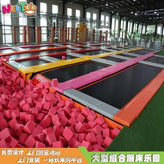 成人蹦床運動 蹦床樂園 超級蹦床設備生產廠家LT-BC006